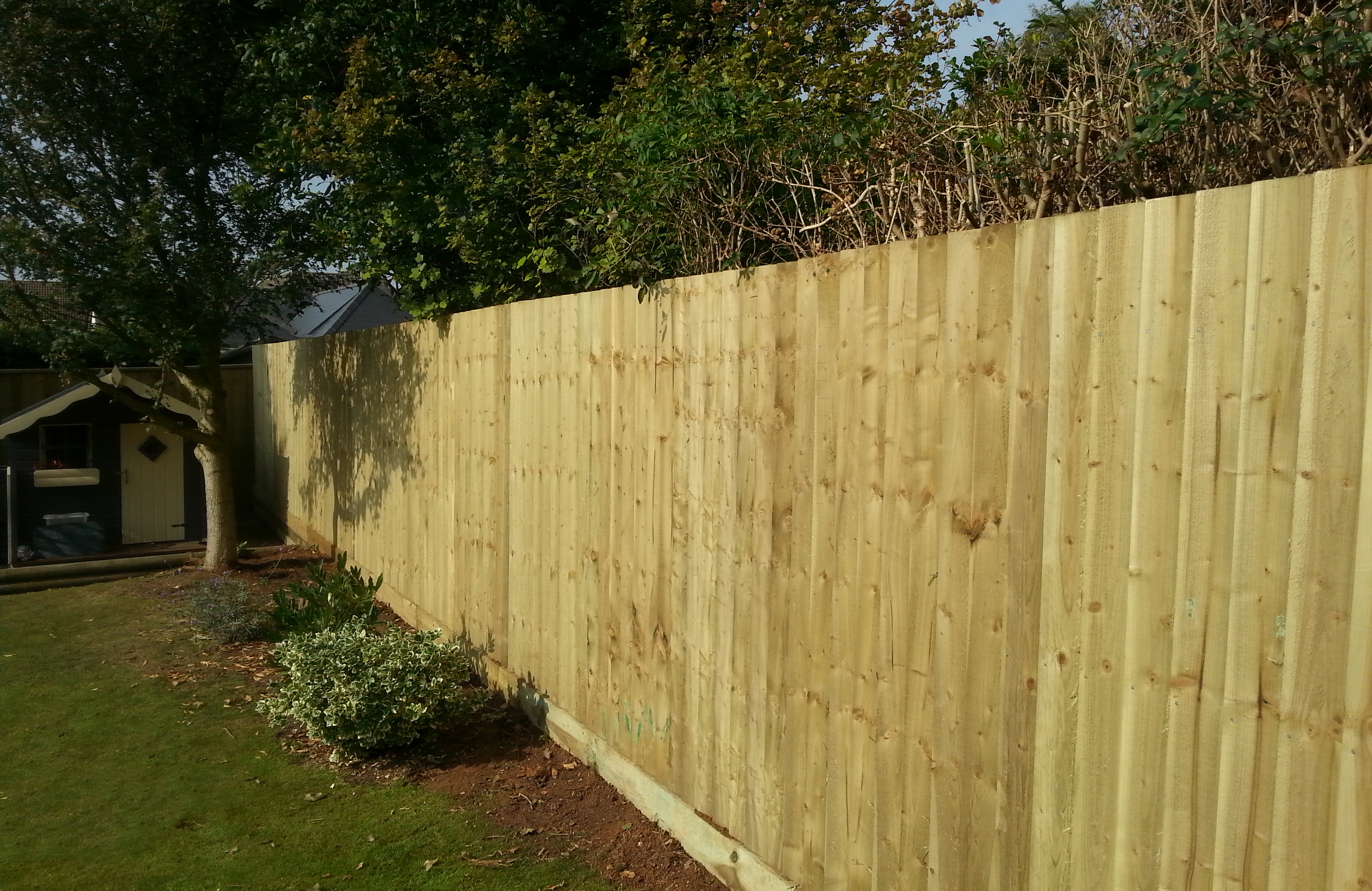 Fencing expertise